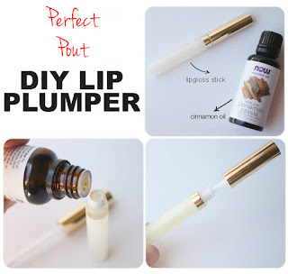 Pouty Lips DIY Lipgloss Cinnamon Oil