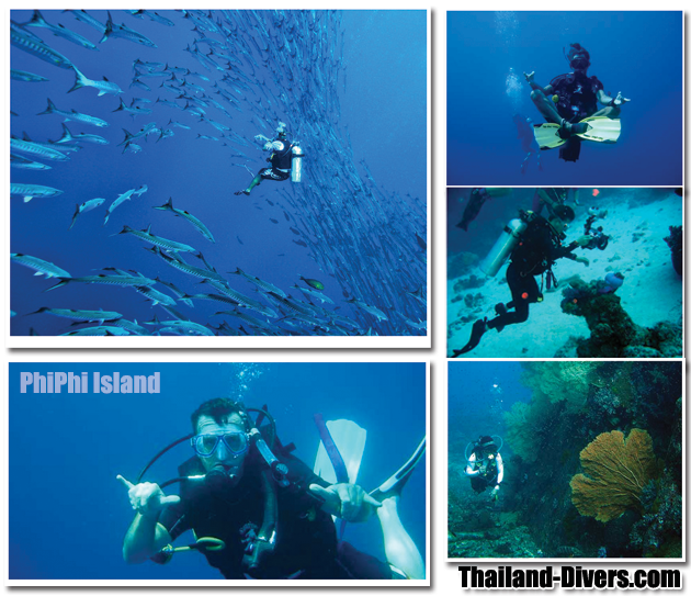 thailand diving,phuket thailand,scuba diving,thai,diving,divers,dive,scuba,phuket,thailand,similan islands