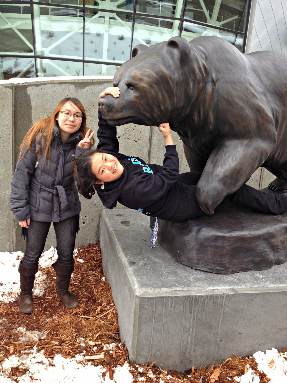 Wrestling a Bear at UAlberta