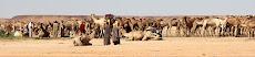 Leonor en Libia