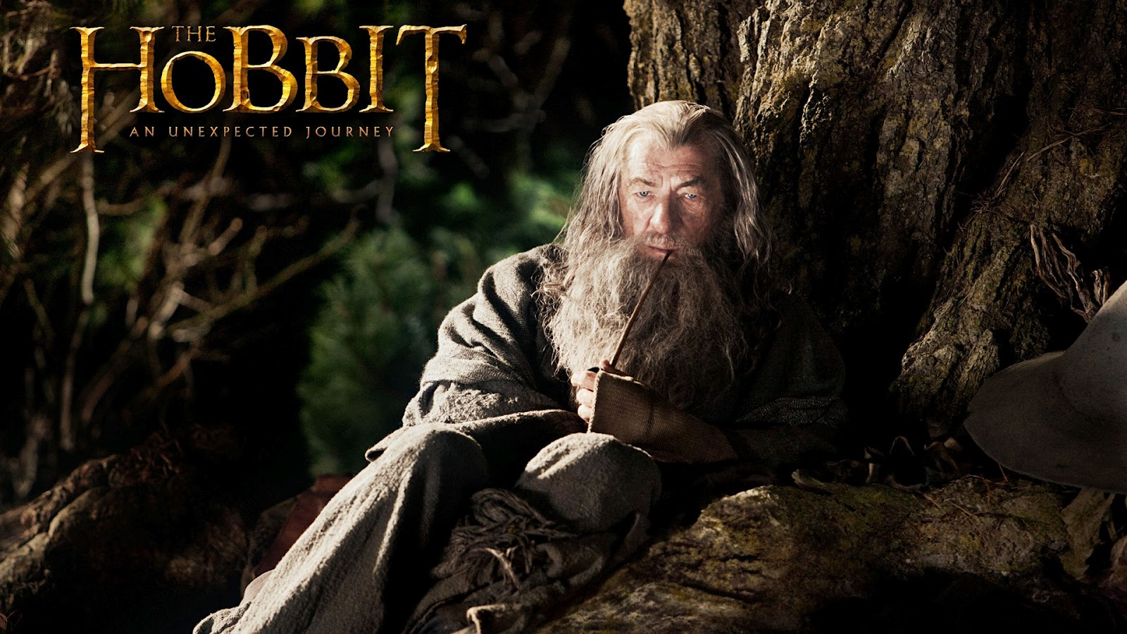 http://3.bp.blogspot.com/-0fmnWIdiSzg/T7L-1qIu9bI/AAAAAAAAEfk/CAcUh2u5qyY/s1600/The+Hobbit+An+Unexpected+Journey+HD+Wallpaper+9.jpg