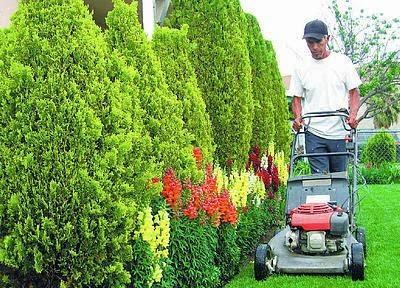 Inicie su negocio de jardineria ideas de negocio for Jardinero en casa