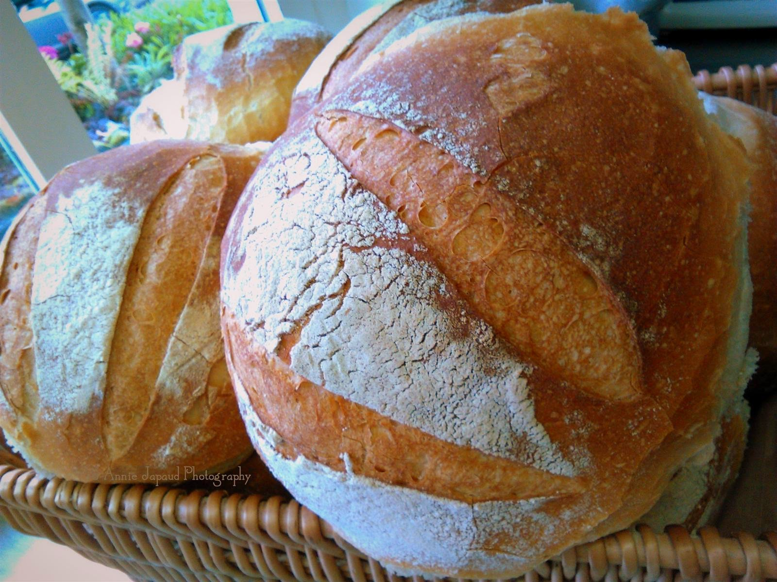 Sourdough bread image
