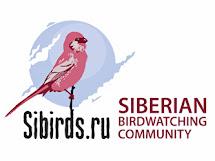 Птицы Сибири