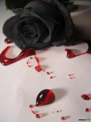 Así sangramos