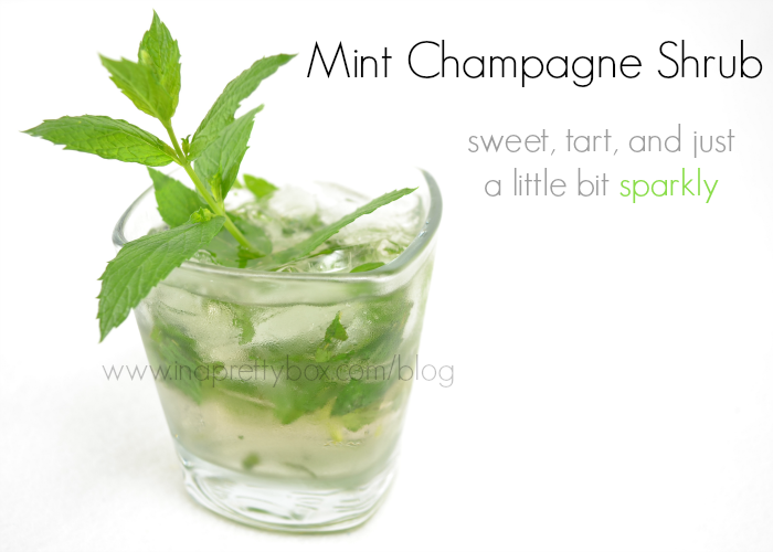 Mint Champagne Shrub Recipe