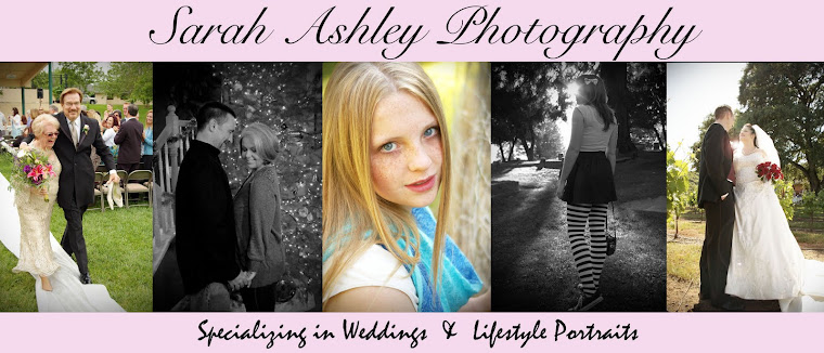 Sarah Ashley Photography