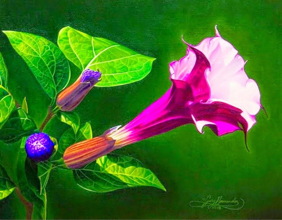 ver-cuadros-de-flores-al-oleo