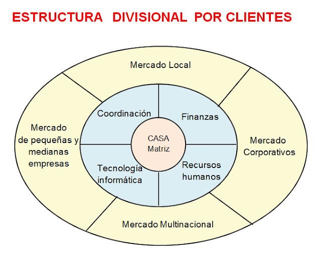 Estructura divisional por cliente-Estructura organizacional
