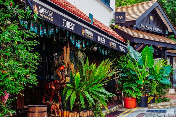 Ann Siang Hill, Chinatown
