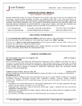 Resume Executive Summary resume executive summary product manager resume executive summary statement examples Executive Summary Example Resume