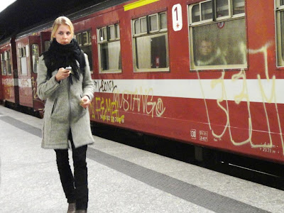 Bruxelles mustang
