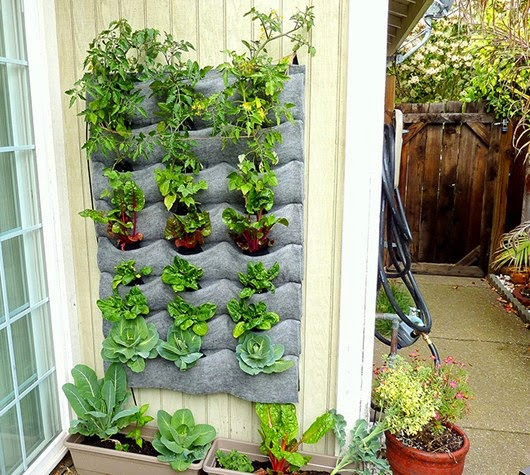 Decorate with hanging trees in the garden feng shui for Hanging vegetable garden ideas
