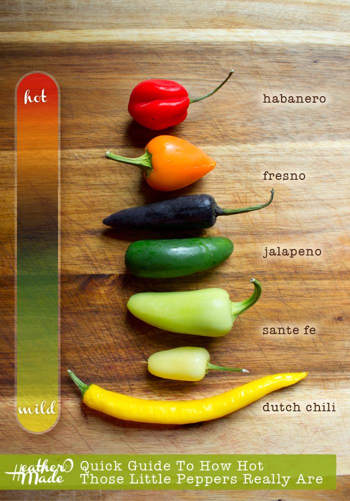 Hot Pepper Guide