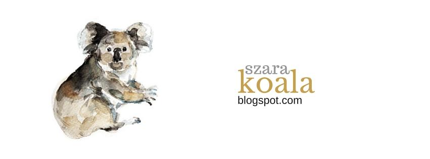 Szara koala | blog o życiu