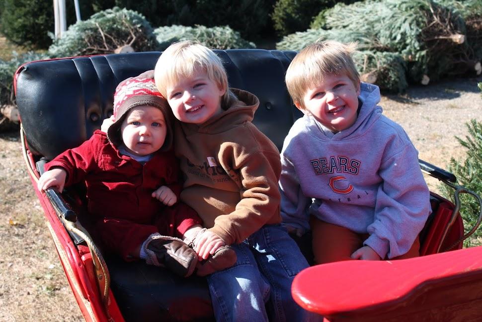 Eli, Knox and Briggs