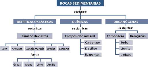 Formacion de piedras y fosiles rocas sedimentarias for Formacion de la roca
