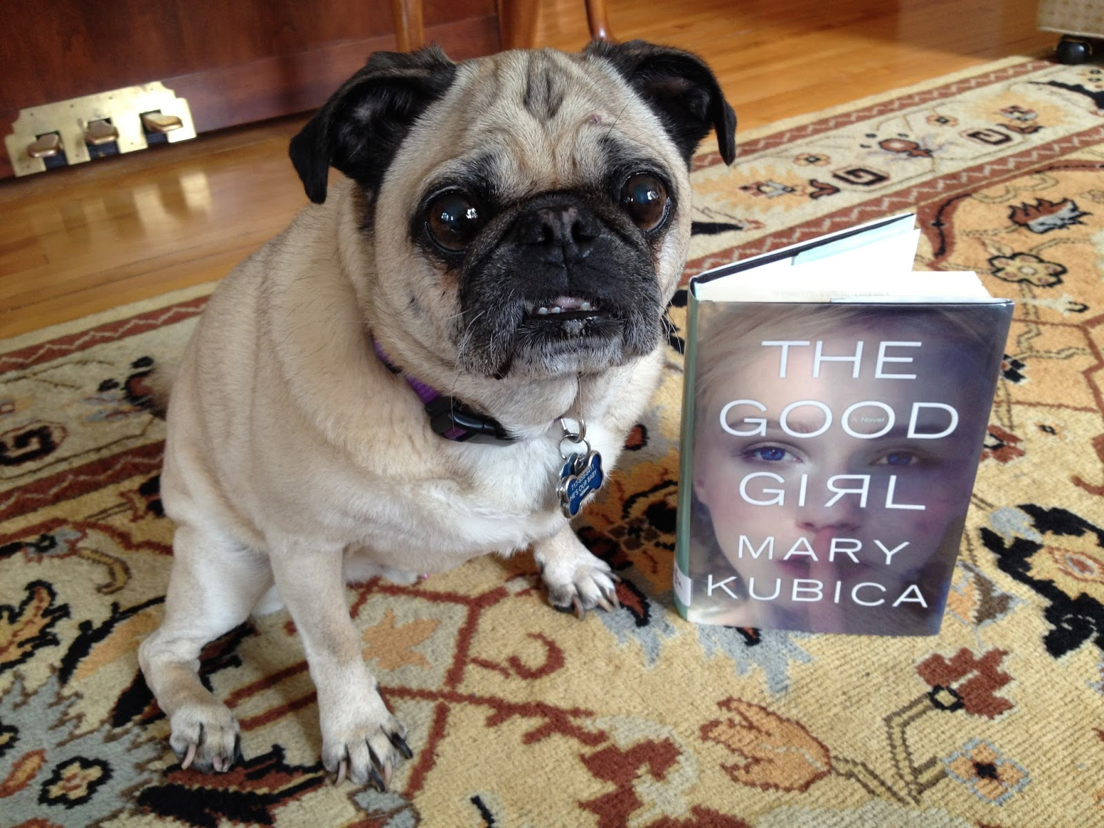 """Stageoflife Book Blog """"The Good Girl"""" A Gone Girl esque"""