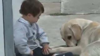 Το συγκινητικό βίντεο ενός παιδιού με σύνδρομο Down και ενός σκύλου