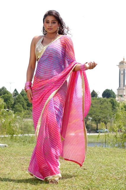 Priyamani In Saree Hot Actress