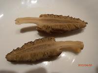 Insertion typique du pied de la morille