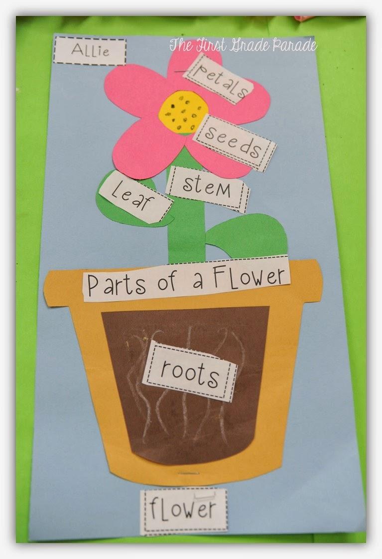 Part Of Art : Plants aplenty the first grade parade lovin