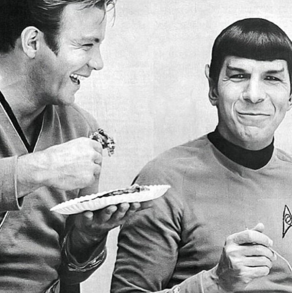 Leonard Nimoy Spock Diversity is be...