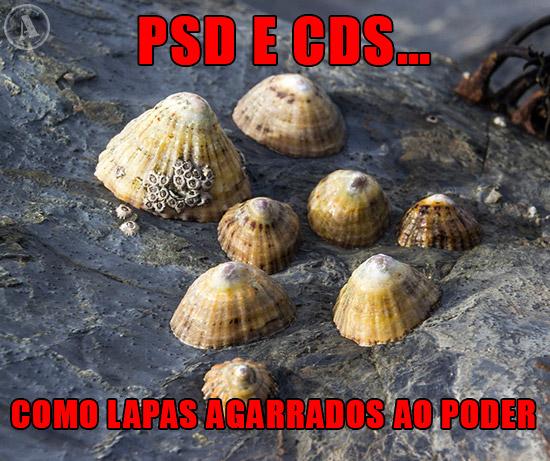 Imagem de Lapas agarradas à rocha - PSD e CDS… Como Lapas agarrados ao poder