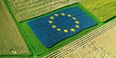 Κοινός Αγροτικός Παρασιτισμός