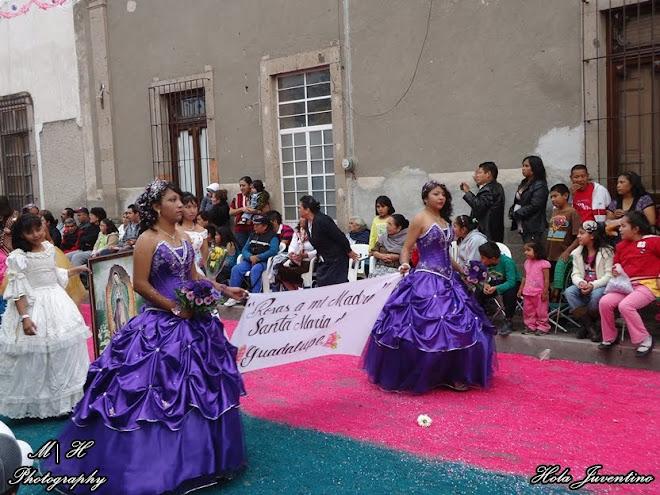 Contingente de Rosas a la Virgen de Guadalupe