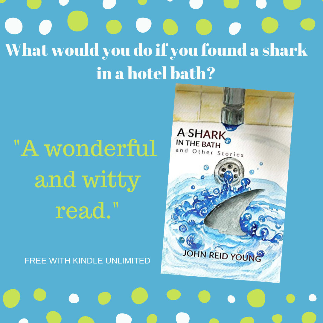 A Shark in The Bath