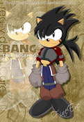 Bang The Hedgehog
