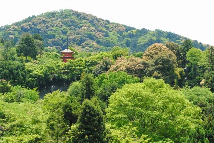 Kyoto_Templo_Kiyumizudera_Vegetación