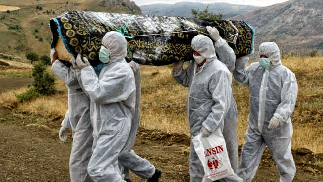 Filovirus ébola