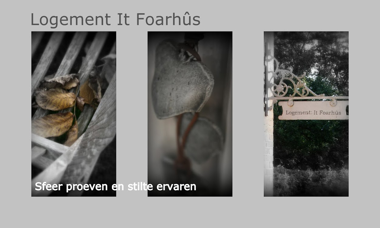 logement it foarhus