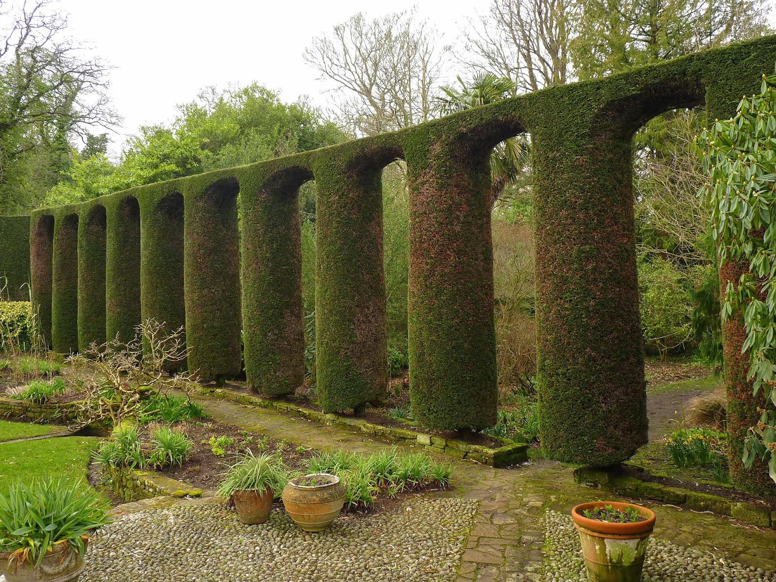 Birding For Pleasure: Good Fences - Mount Stewart Gardens