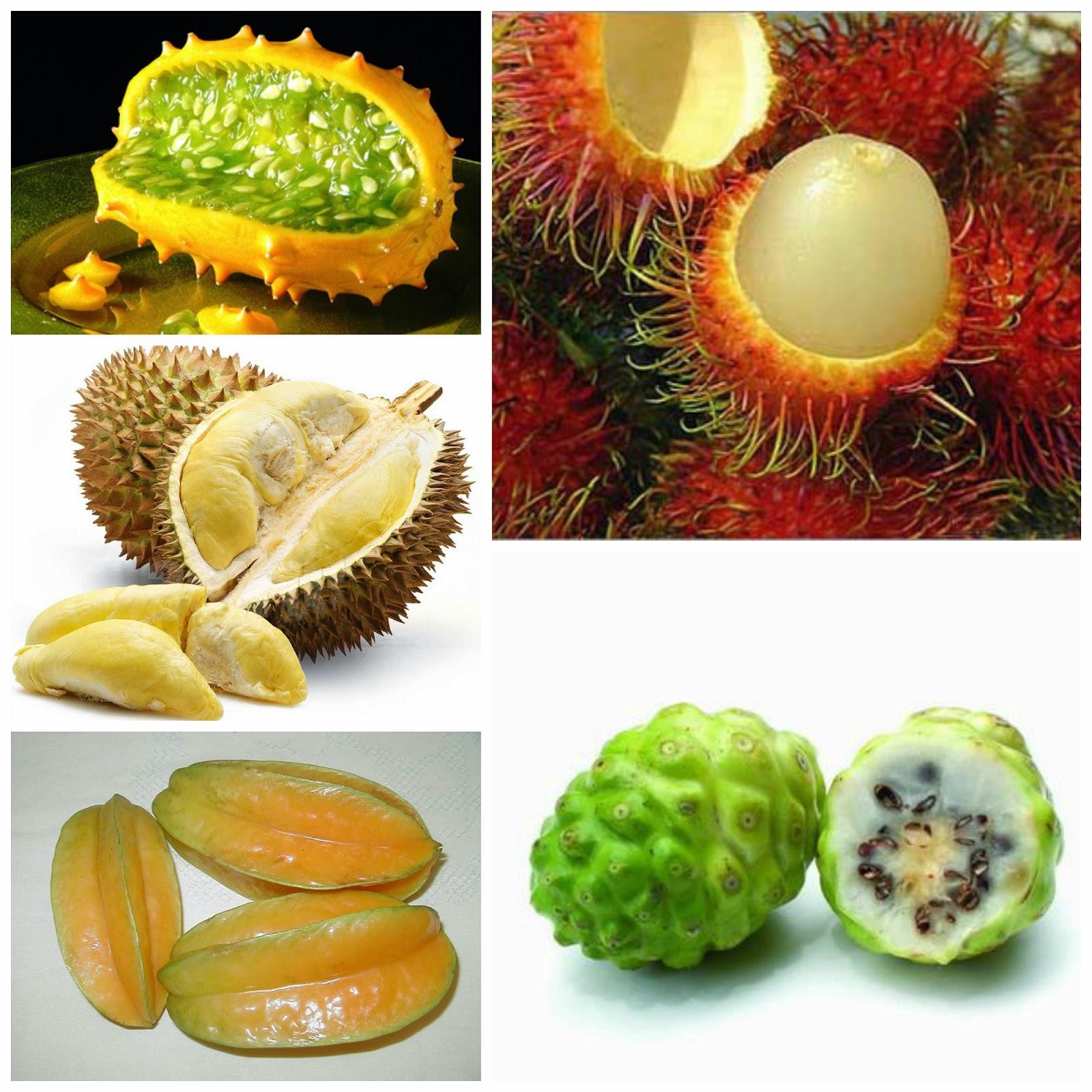 Frutas exoticas frutas verduras beneficios propiedades y usos - Frutas tropicales y exoticas ...