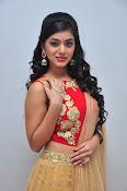 yamini bhaskar latest glam pics-thumbnail-2