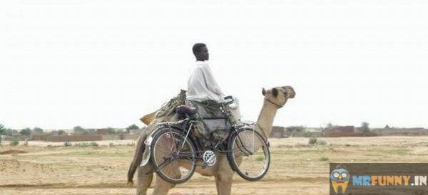 Funny African Travel Like A Boss