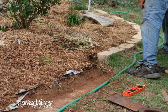 Learn no dig gardening, less weeding, watering and bugs Pic 8