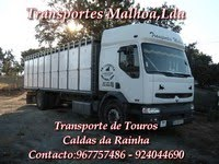 Transportes Malhoa