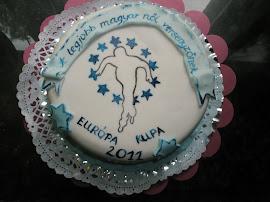Szponzor torta