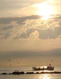 Ocean View Crabbers