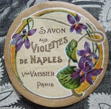 Violettes de Naples