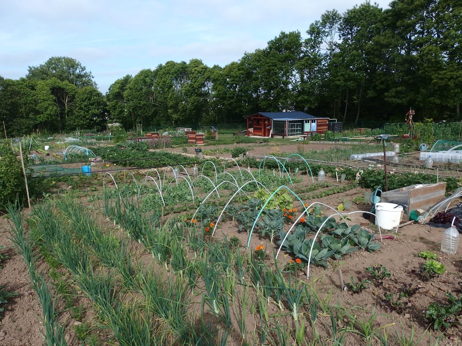 Les jardins familiaux de feunteun don 2015 06 14 for Jardin familiaux