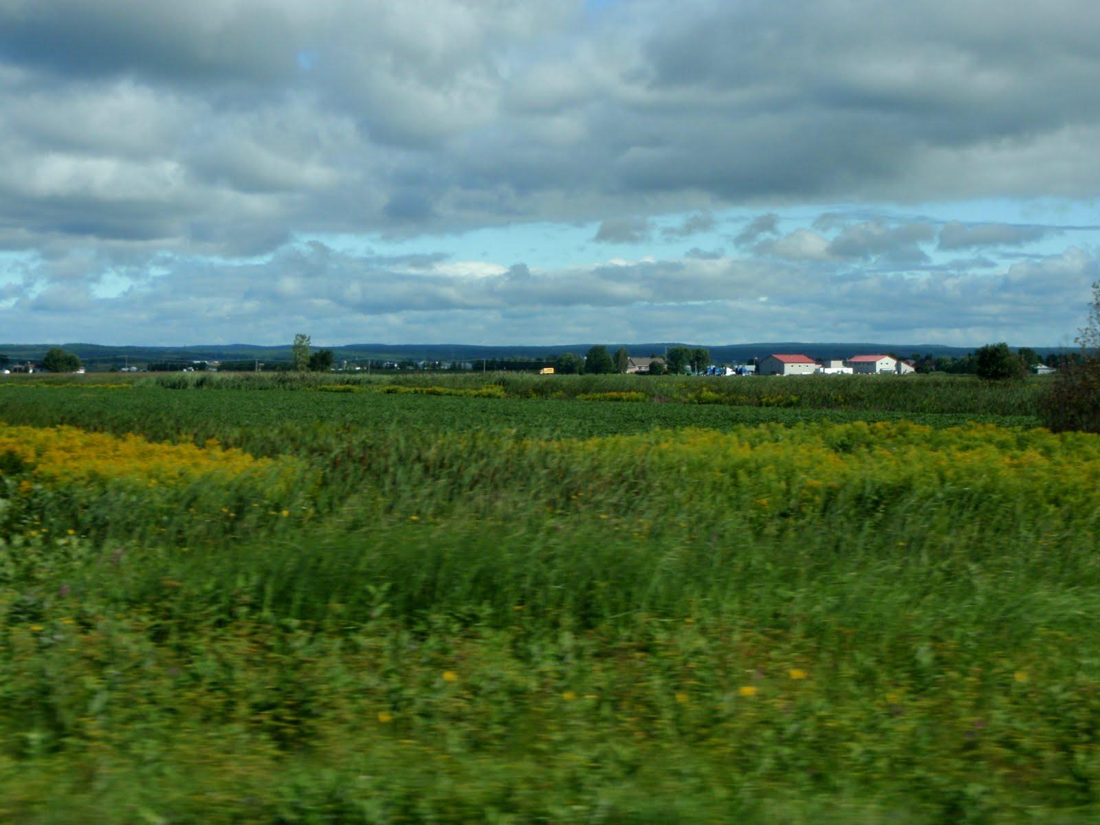 Fram Fields