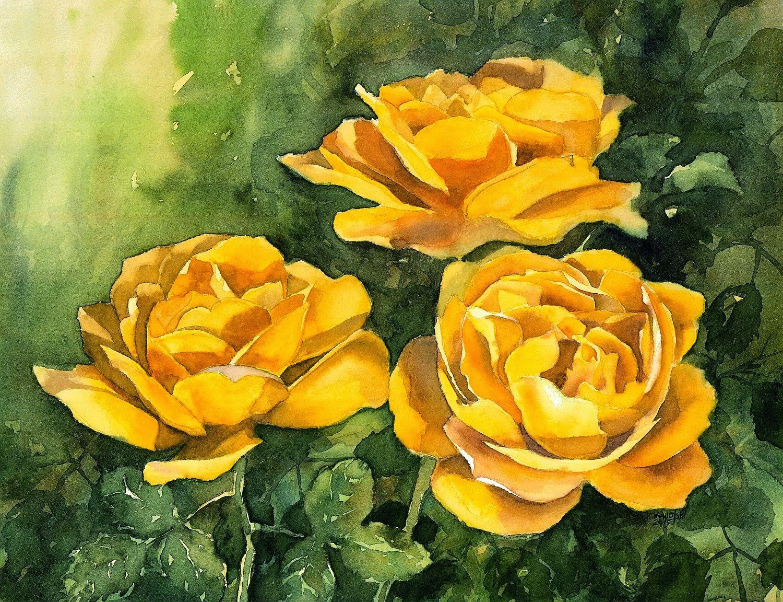 Watercolors By Krzysztof Kowalski Yellow Roses