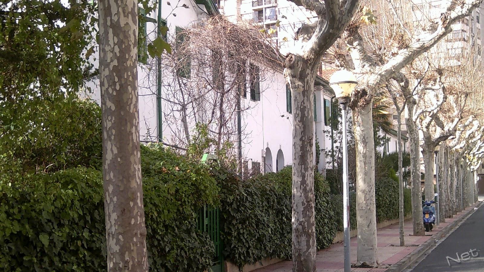 Mi ciudad en fotos logro o las casas baratas - Alquiler de casas en logrono ...