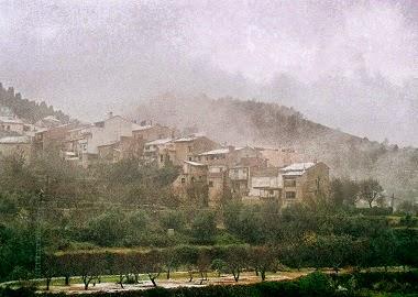 Alcoleja. Fotografia de Sergio Manzanaro
