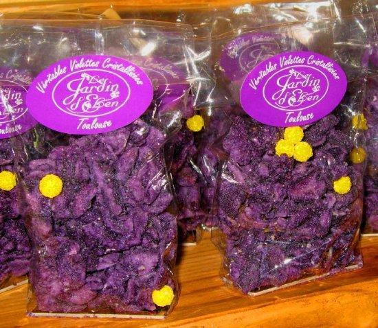 matin lumineux la maison de la violette 224 toulouse